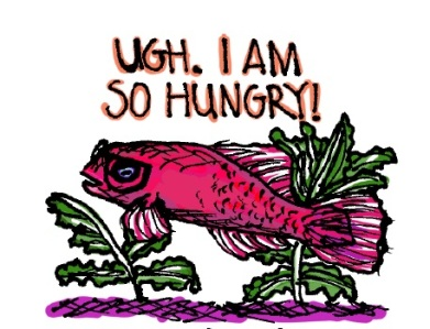 Hungry fish. Stupid Fish series, Volume 1. Marker and digital.