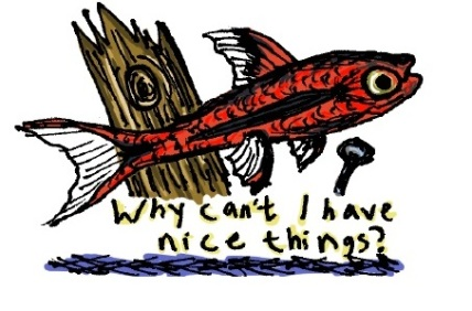 Nice things fish. Stupid Fish series, Volume 1. Marker and digital.