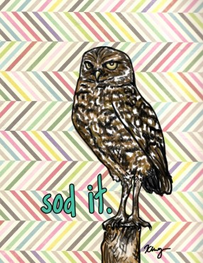 Sod It Burrowing Owl, digital