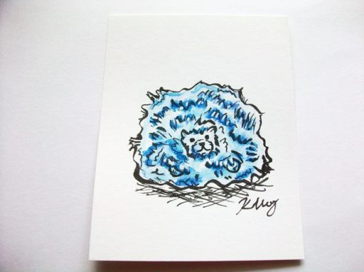 Blue Pygmy Puff, ink and watercolor