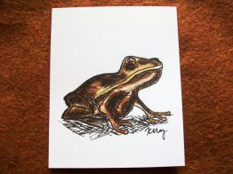 Chocolate Frog, ink and watercolor