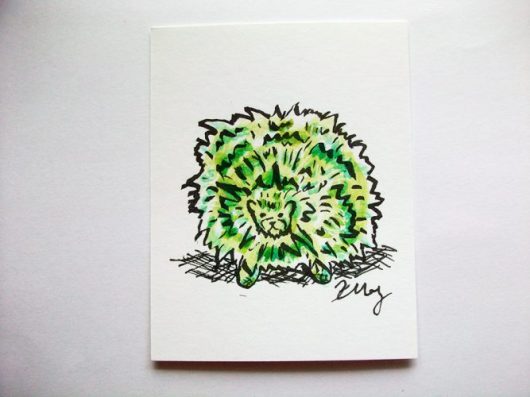 Green Pygmy Puff, ink and watercolor