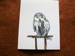 Snowy Owl, ink and watercolor