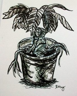 Crying Mandrake, ink, white gelly roll and marker